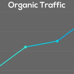 what is organic traffic